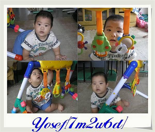 PA290898.jpg