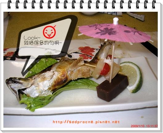 日光浴的魚2