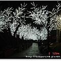 20090502劍湖山燈光走道.JPG