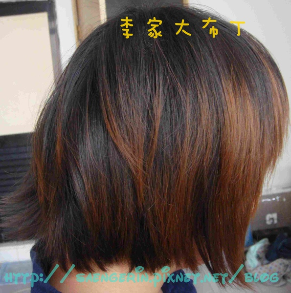 DSC08581.jpg
