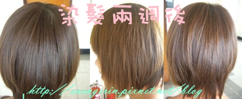 CIMG9183-2-horz.jpg