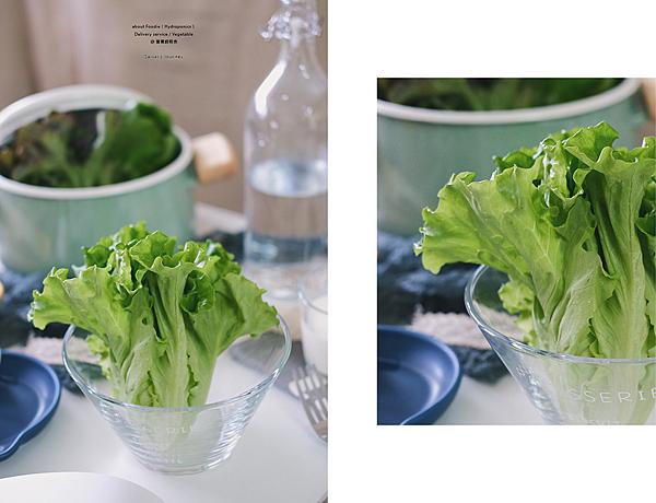 營養師輕食 水耕蔬菜 生菜沙拉 食用花三色堇 石竹 05.png