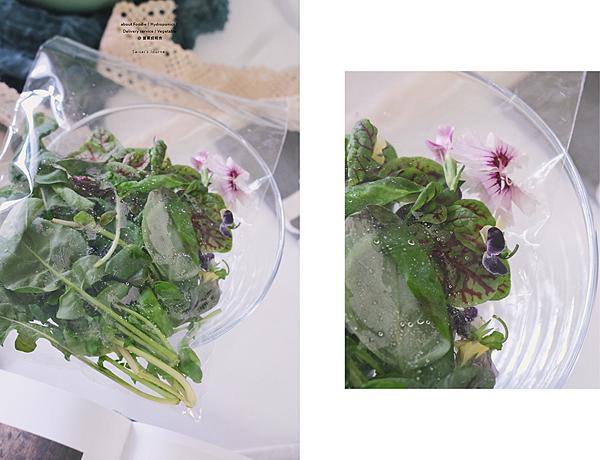 營養師輕食 水耕蔬菜 生菜沙拉 食用花三色堇 石竹 06.png