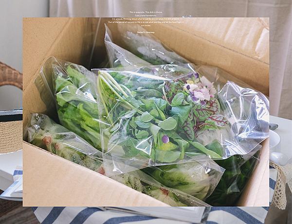 營養師輕食 水耕蔬菜 生菜沙拉 食用花三色堇 石竹 11.png