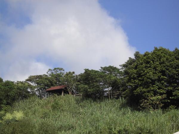 PICT3359.JPG