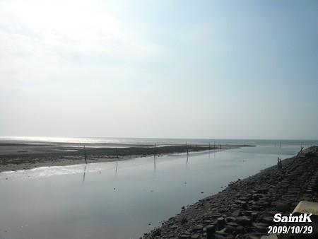 永安觀光漁港旁的溼地