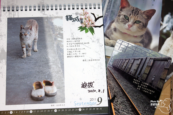 IMG_2994-2.jpg