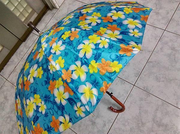 善良的雨傘