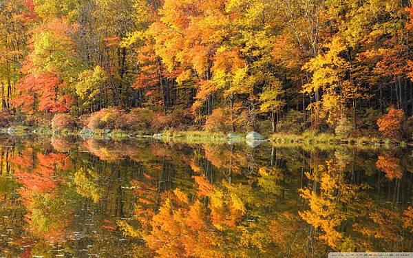 fall_reflection-wallpaper-1920x1200.jpg