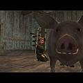 我老婆好像喜歡小豬