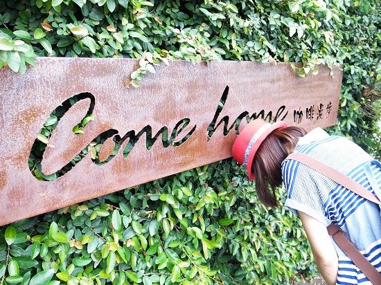 Come Home 01