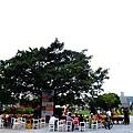 駁二夏午茶時間-蓬萊廣場 06