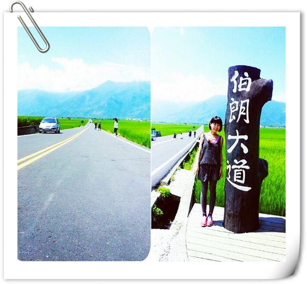 20140927 台東池上伯朗大道 01.jpg