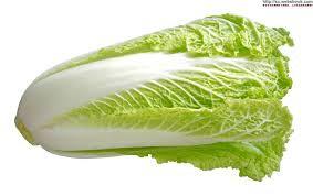"""""""大白菜""""的圖片搜索結果"""