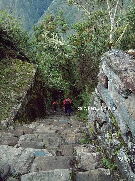 peru_Inca trail_816.jpg