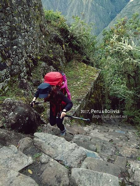 peru_Inca trail_6876.jpg
