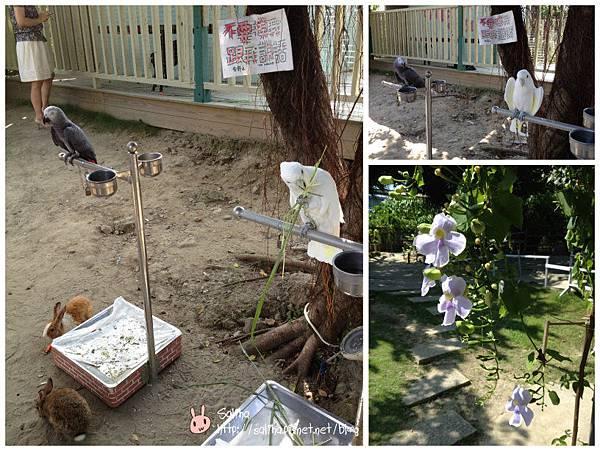 兔兔8_meitu_25.jpg