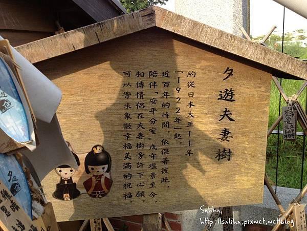 夕遊出張所 (38).jpg