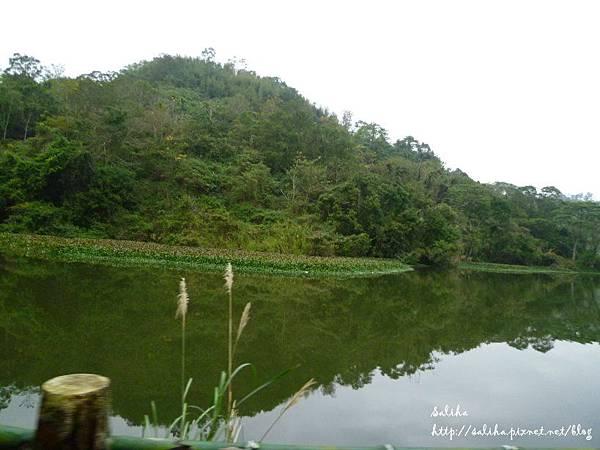 湖畔花時間 (4).JPG