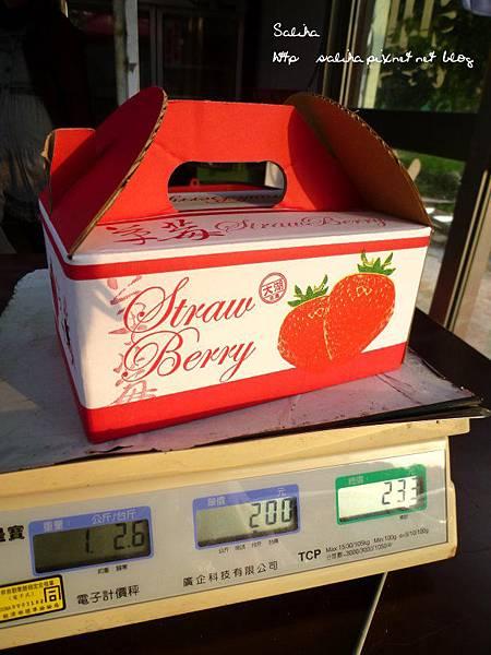 大湖草莓季2 (12).JPG
