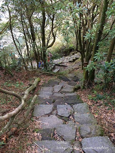 楊明山旅遊景點夢幻湖 (24).jpg