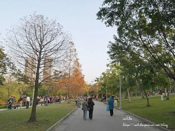 大安森林公園 (4).JPG