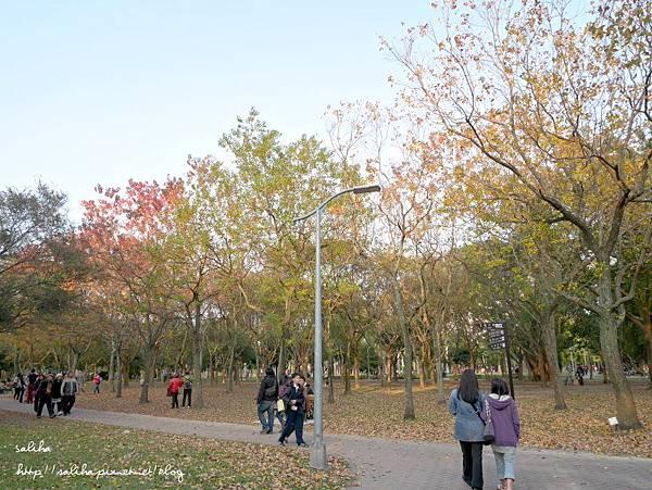 大安森林公園 (6).JPG
