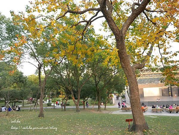 大安森林公園 (18).JPG