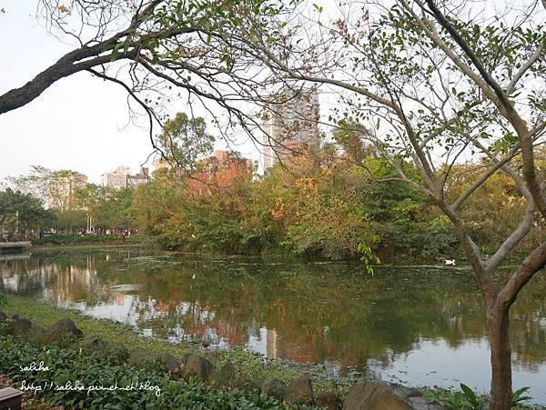 大安森林公園 (25).JPG
