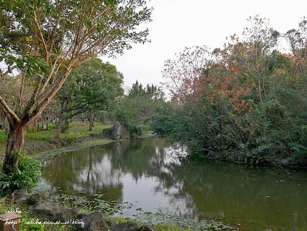 大安森林公園 (28).JPG