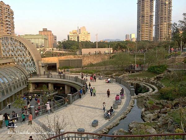 大安森林公園 (32).jpg