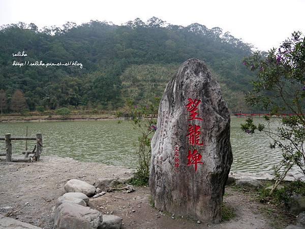 宜蘭下午茶望龍埤景觀咖啡 (3).JPG