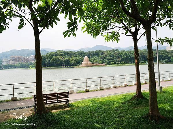 內湖碧湖公園 (2).JPG