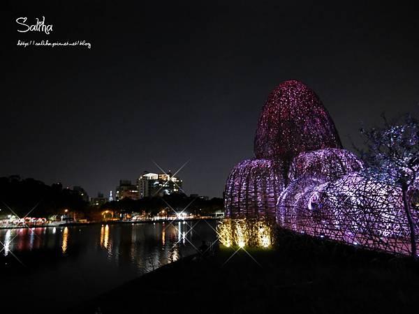 內湖碧湖公園 (11).JPG