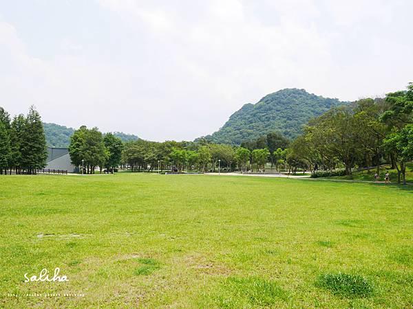 大湖公園 (2).JPG