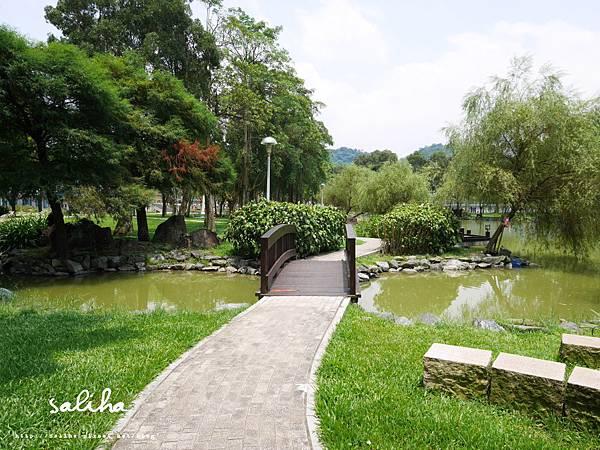 大湖公園 (8).JPG
