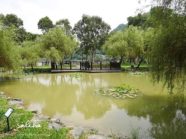 大湖公園 (12).JPG