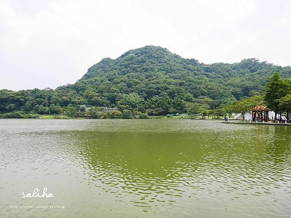 大湖公園 (17).JPG