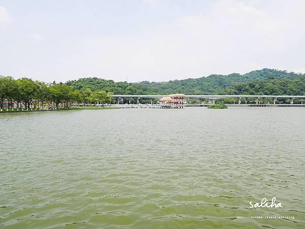 大湖公園 (46).JPG