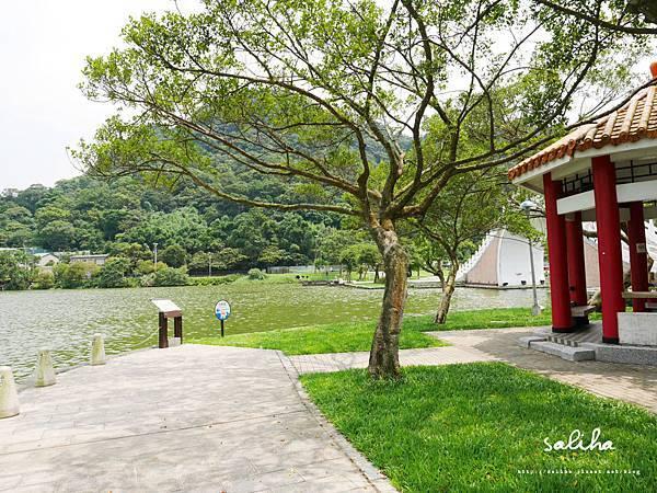 大湖公園 (45).JPG