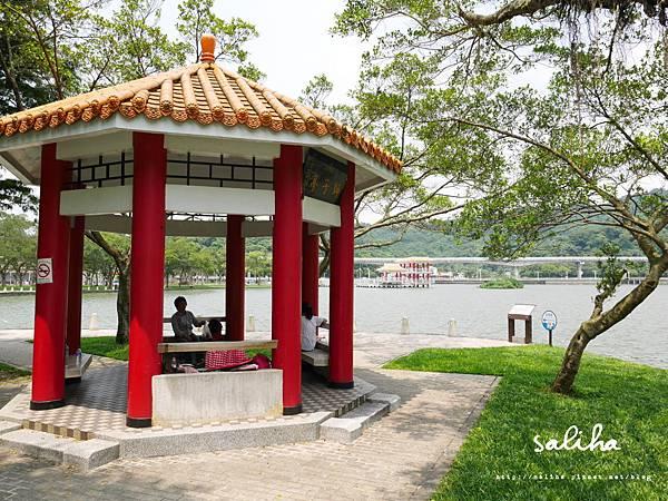 大湖公園 (65).JPG
