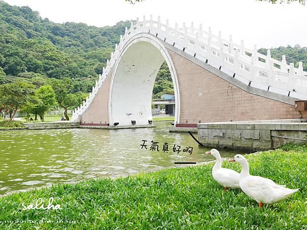 內湖大湖公園 (4).jpg