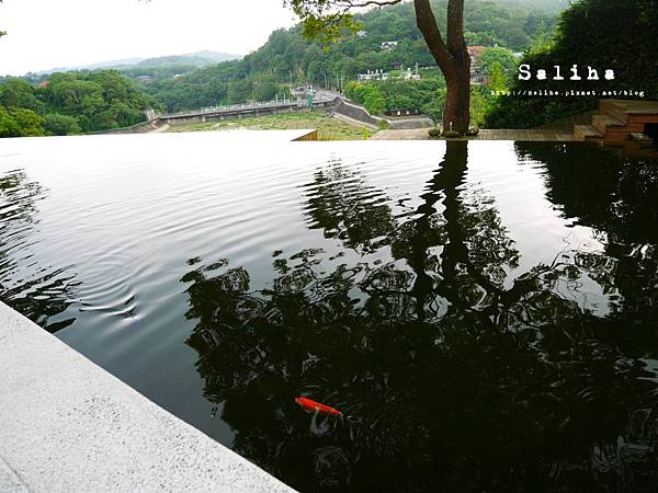 新竹景點二泉湖畔 (1).JPG