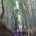 嵯峨野竹林步道