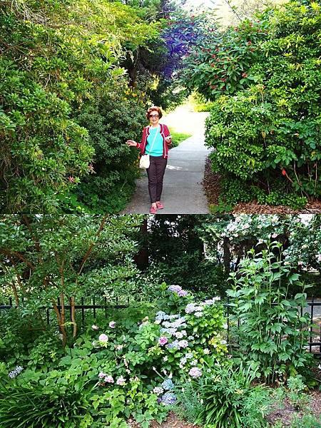 英格蘭花園