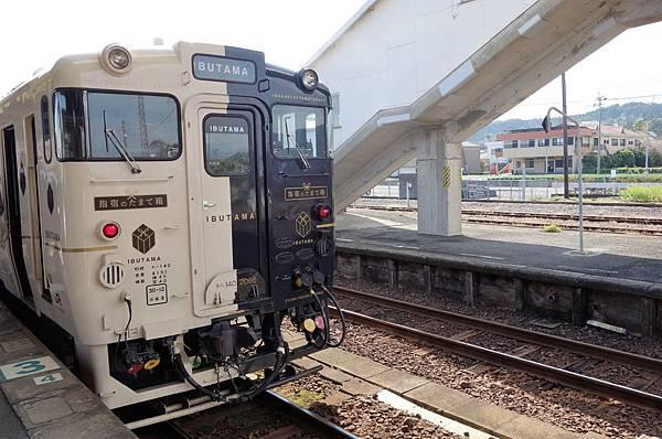指宿玉手箱列車 (1).JPG