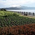 池田湖 (3).JPG