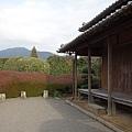 3平山亮一庭園 (3).JPG