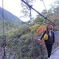 桃山步道 武陵橋景