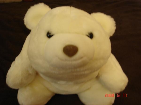大白熊.JPG